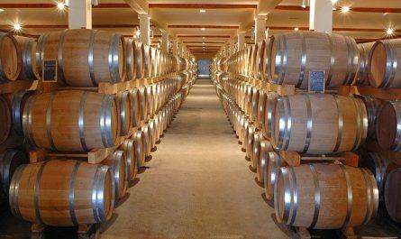 Investissement dans le vin , le guide