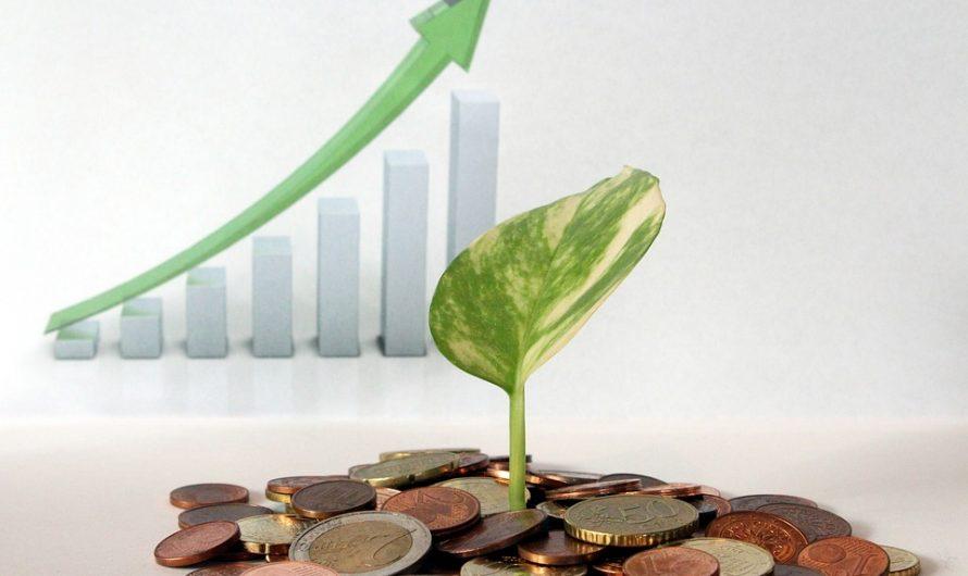 8 faits étranges sur les dividendes m6
